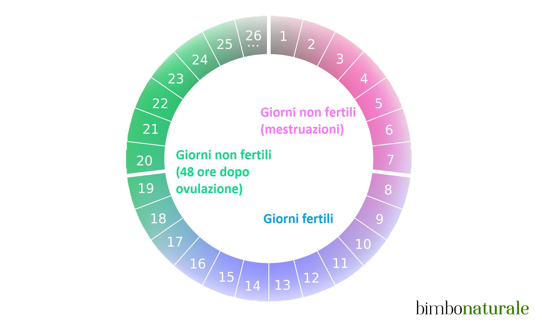 Come funziona il ciclo mestruale calcola i giorni fertili e il periodo dell ovulazione - Sensazione di bagnato prima del ciclo o gravidanza ...