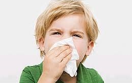 Influenza in vista? Proteggiti da virus e batteri in modo naturale!